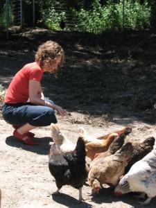 Chicken Visit