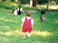 Farm Life Tours