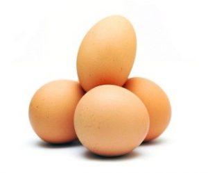 Fresh Organic Vegetarian Kosher Eggs